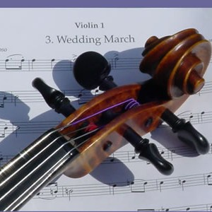 String Music - String Quartet in San Antonio, Texas