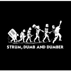 Strum, Dumb and Dumber - Acoustic Band in Allegan, Michigan