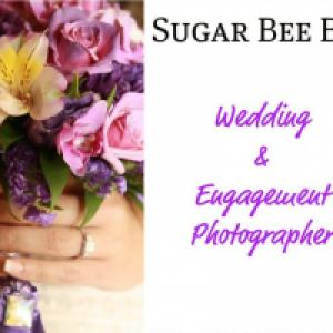 Sugar Bee Bee - Photographer in Orlando, Florida