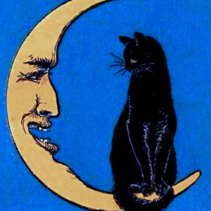 Sun and Moon Tarot Readings - Tarot Reader / Psychic Entertainment in Atlanta, Georgia