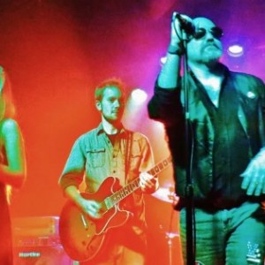Sunday Sound - Tribute Band in Erie, Pennsylvania