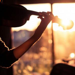 Sunrise City Strings - Acoustic Band / Americana Band in Vero Beach, Florida