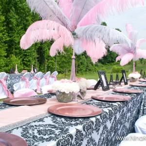Swanky Productions - Event Furnishings / Backdrops & Drapery in Alexandria, Virginia