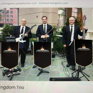 Stringdom - Wedding Band in Syracuse, New York