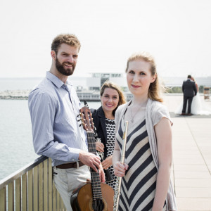 Tabula Nova Ensemble - Classical Ensemble in Hartland, Wisconsin