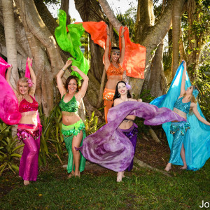 Tahja - Belly Dancer in Sarasota, Florida