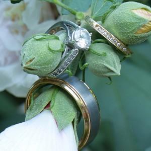 Tanner Adventures Photography - Wedding Photographer in Brighton, Michigan