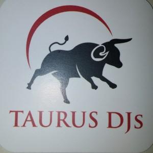 Taurus DJs - Wedding DJ in Raleigh, North Carolina