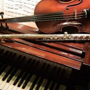 The Antares Musicians - String Quartet / String Trio in Baltimore, Maryland