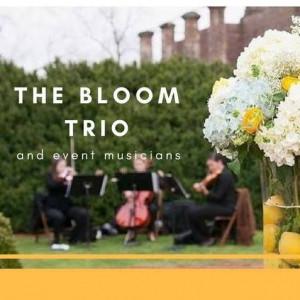 The Bloom Trio - String Trio in Charlottesville, Virginia