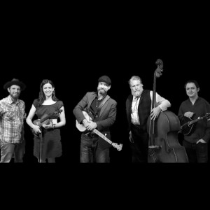 The Bodarks: Hootenanny String Band - Americana Band in Frisco, Texas