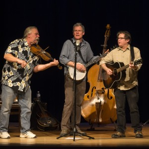 The Canal Street String Band - Acoustic Band / Bluegrass Band in Buffalo, New York