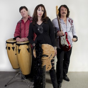 The Distractions - Party Band in Sarasota, Florida
