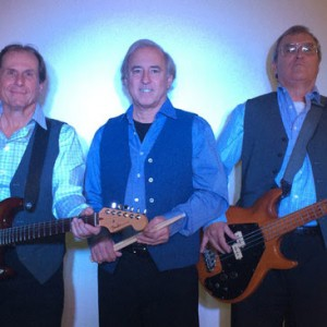 The Eighty Percent Band - Cover Band / Party Band in Vero Beach, Florida