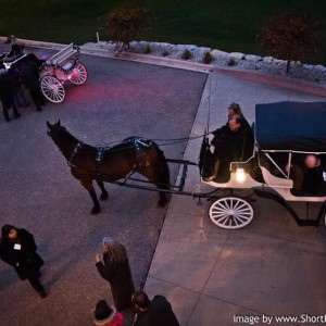 The Enchanted Carriage - Horse Drawn Carriage in Eagle, Wisconsin