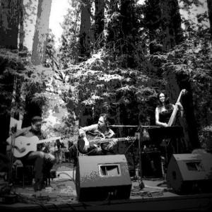 The Gypsy Trio - Jazz Band in Santa Rosa, California