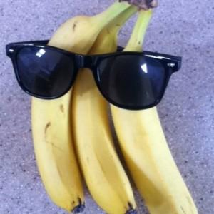 The Hot Bananas - Jazz Band in San Diego, California