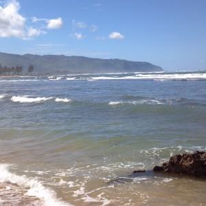 The Lost Hawaiians - Hawaiian Entertainment / Beach Music in Portland, Oregon