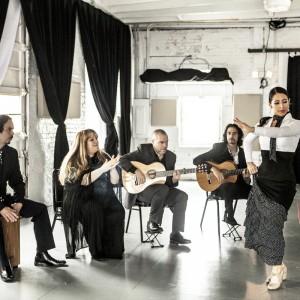 The Martin Metzger Flamenco Ensemble - Flamenco Group in Chicago, Illinois