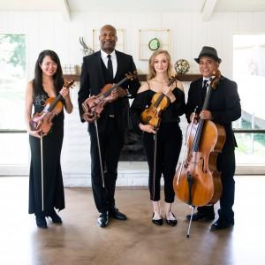 Ocdamia Music Group, LLC - String Quartet / Strolling Violinist in Anaheim, California