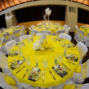 The Party Redux - Party Rentals / Tables & Chairs in Harrisburg, North Carolina