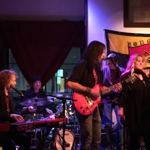 The Purple Valley - Cover Band in Ithaca, New York