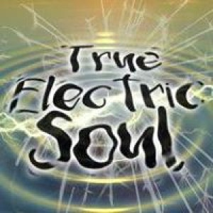 True Electric Soul - Blues Band in Gainesville, Florida