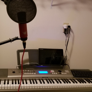 The Skeleton Keys - Keyboard Player in Minneapolis, Minnesota