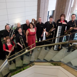 The Sound Hounds - Big Band / Dance Band in Glen Ellyn, Illinois