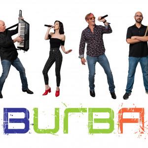 The Suburbans - Party Band in Kansas City, Missouri
