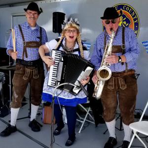 The Swedish Meatballs - Accordion Player / Polka Band in Brooklyn, New York
