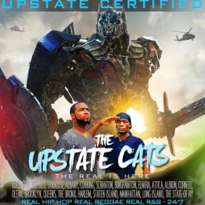 The Upstate Cats - Caribbean/Island Music in New York City, New York