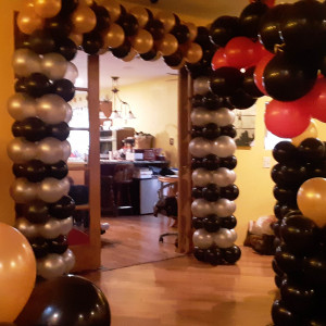 The Wonderful World of Balloons - Balloon Decor / Party Decor in Champaign, Illinois