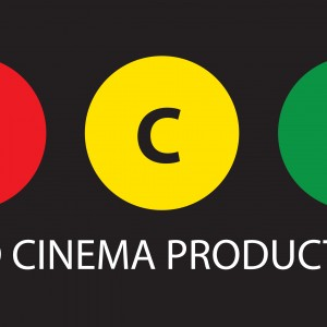 Third Cinema Productions - Wedding Videographer in Kinross, Michigan