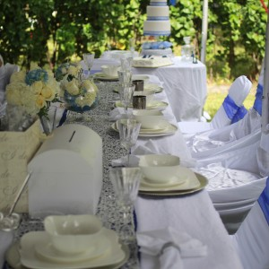 Timeless Elegance by Dawn - Event Planner in Miami, Florida