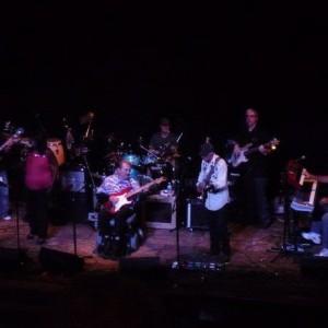 Toler Tucci Band - Southern Rock Band in Sarasota, Florida