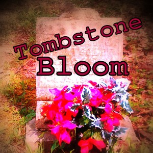 Tombstone Bloom - Rock Band in Bloomington, Indiana