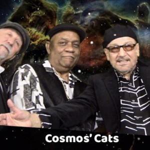 Tommy Chris/Cosmos Cats - Pop Music / Dance Band in Youngstown, Ohio