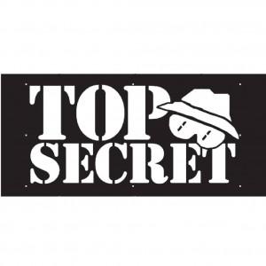 Top Secret Band
