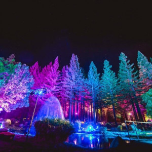 Top Shelf Lighting and Event Services