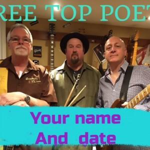 Tree Top Poets - Classic Rock Band in Milton, Ontario