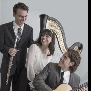 Trio Delphi - Classical Ensemble / Classical Duo in Garden City, New York