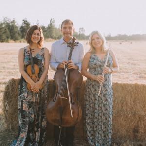 Trio Lumina - String Trio / Classical Ensemble in Bellingham, Washington