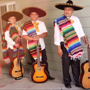 Chuy Y Su Trio La Bamba - Mariachi Band in Concord, California