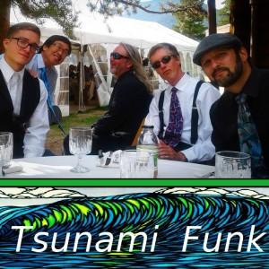 Tsunami Funk - Wedding Band in Bozeman, Montana