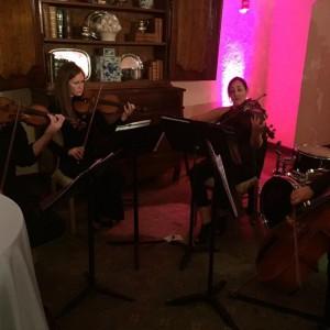 Tulsa Rock Quartet - Classical Ensemble in Tulsa, Oklahoma