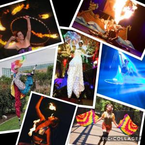 Circus Variety Artist - Circus Entertainment in Los Angeles, California