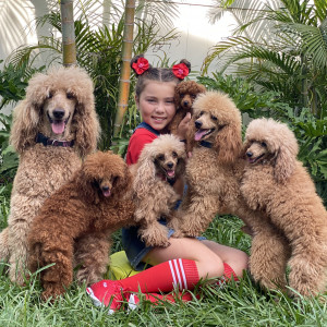 Veranica and Her Incredible Friends🐩 - Circus Entertainment in Oxford, Florida