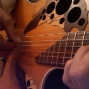 Vinny Stefanelli - Singing Guitarist in Erie, Pennsylvania
