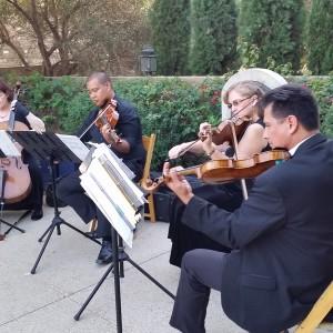 Vintage Strings - String Quartet in San Diego, California